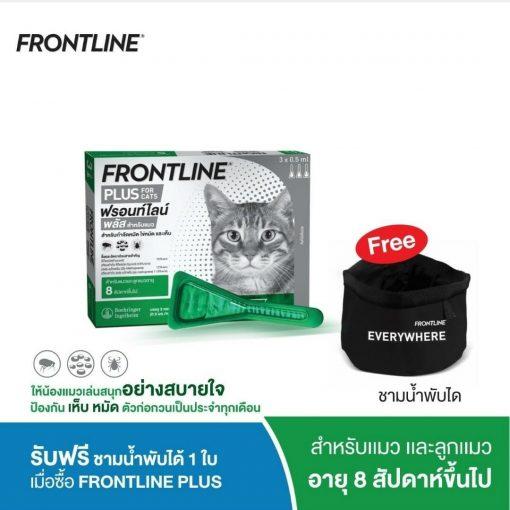 2021 Online promotion2105249  