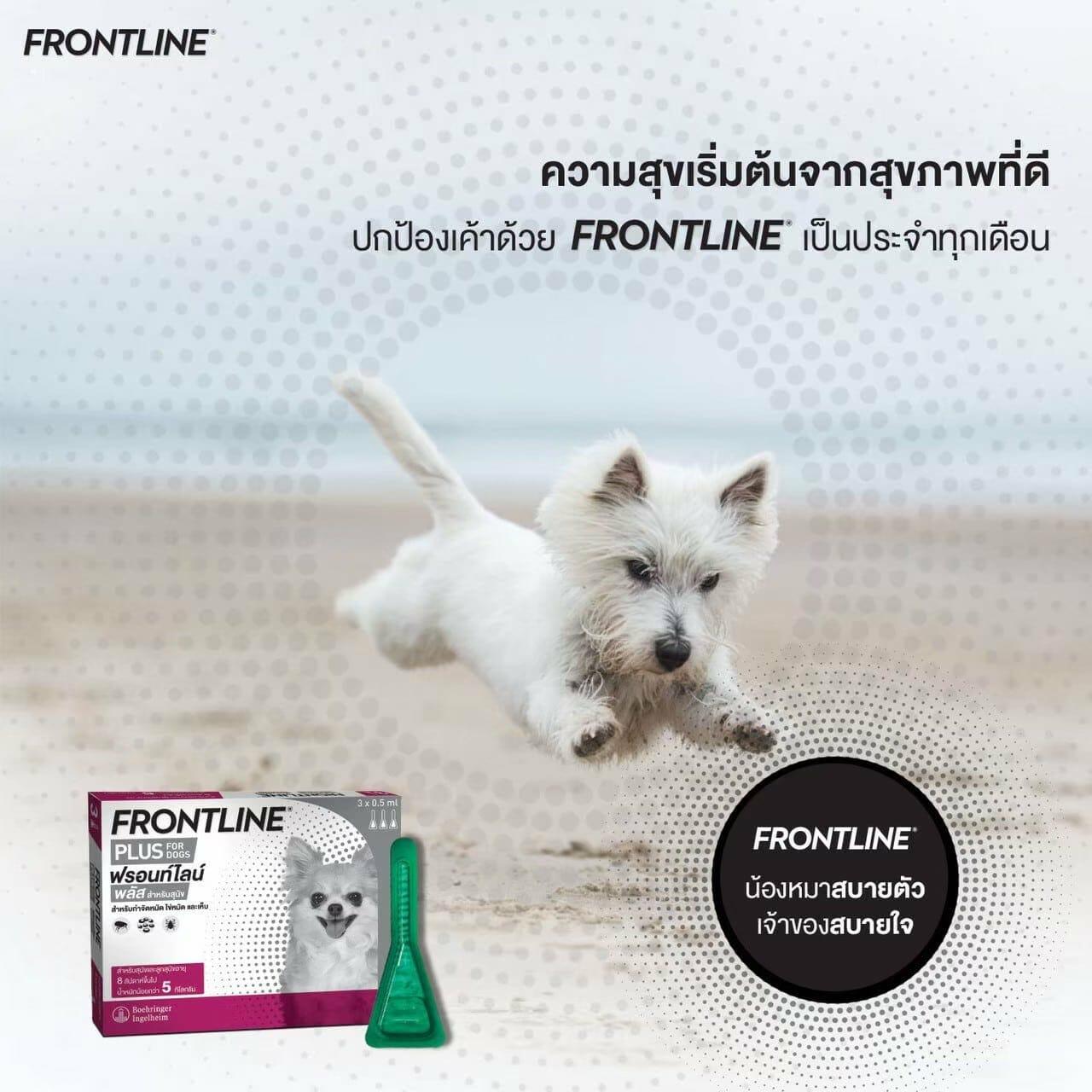 FRONTLINE PLUS210524  