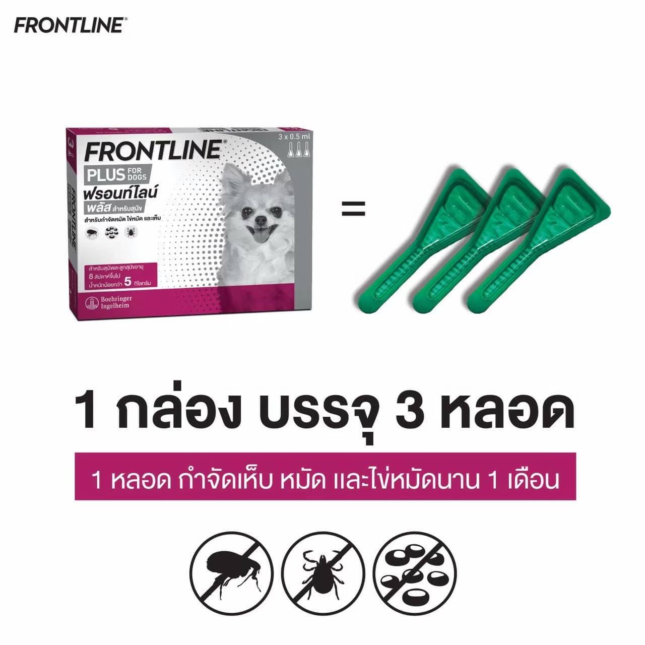 FRONTLINE PLUS2105240  