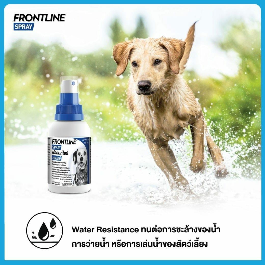 Frontline spray๒๑๐๓๑๙ |
