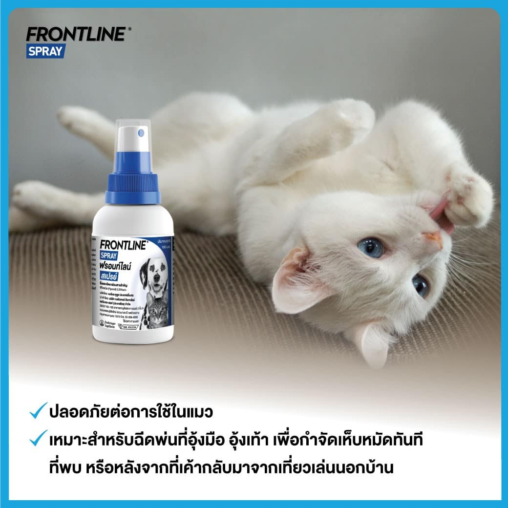 Frontline spray๒๑๐๓๑๙0 |