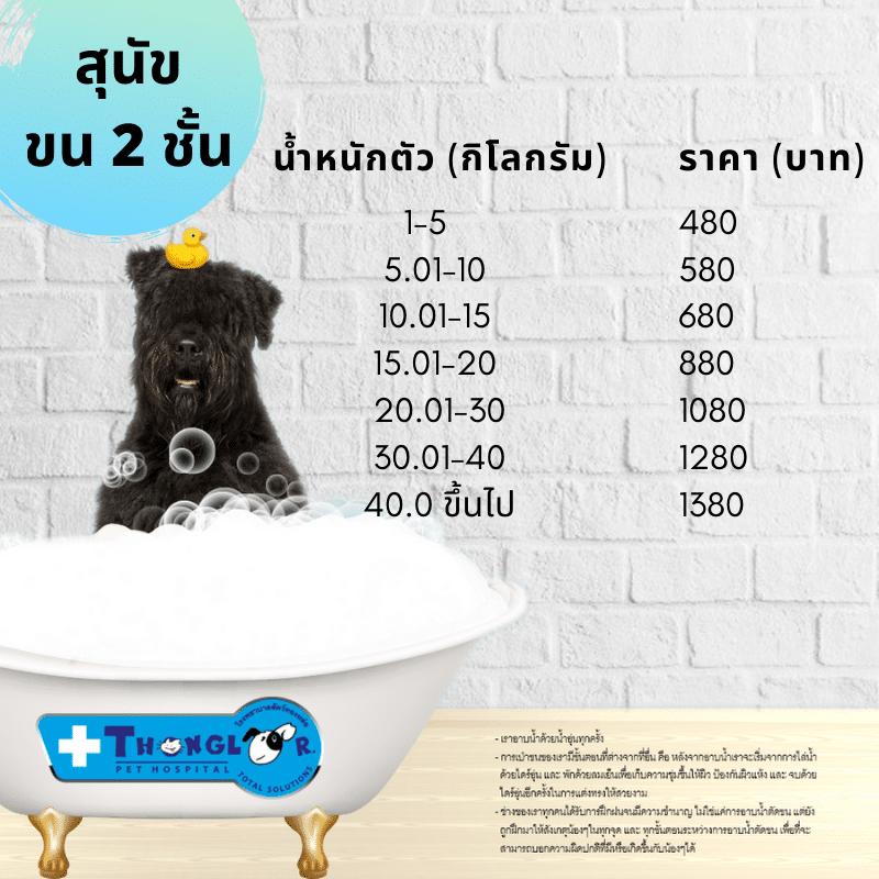 ไขข้อสงสัย แมวต้องอาบน้ำไหม อาบน้ำแมวอย่างไร |