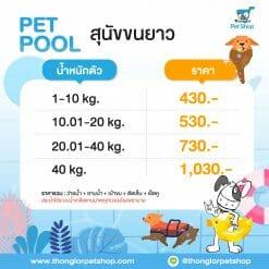 pet pool 02 |