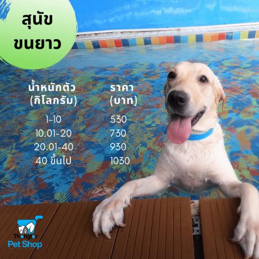 Dog15KG50110KG100115KG150120KG200130KG300140KG4001KG  