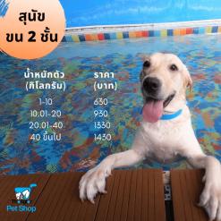 Dog15KG50110KG100115KG150120KG200130KG300140KG4001KG |
