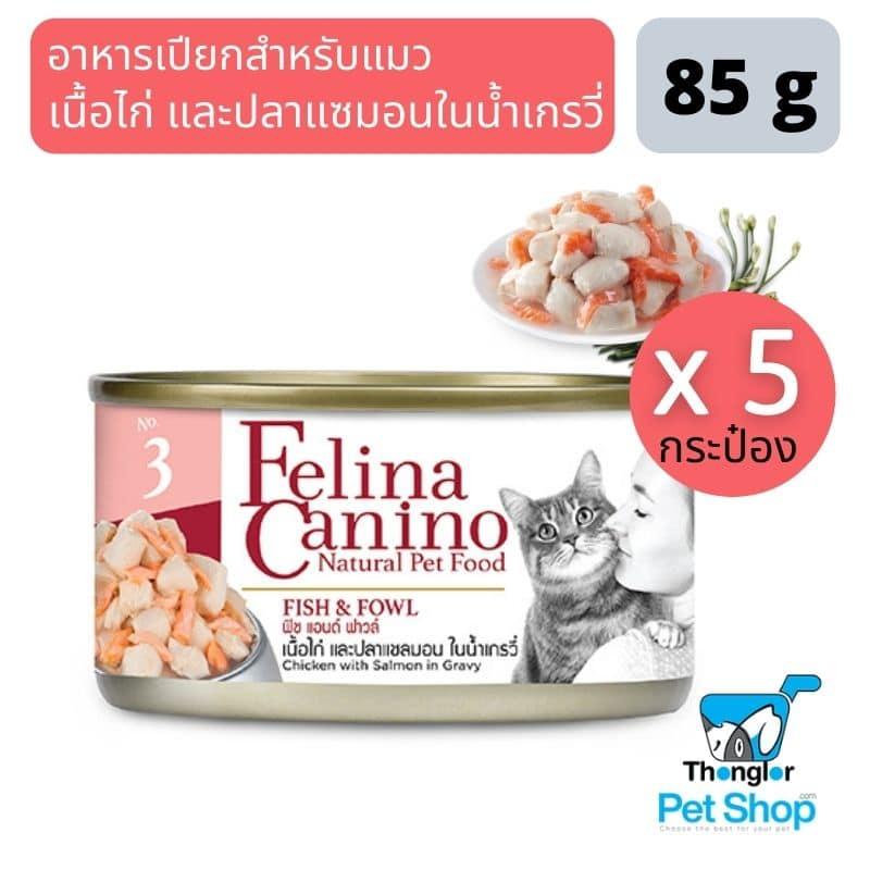 อาหารแมวถ่ายเหลว การย่อยหรือการดูดซึมอาห3 |