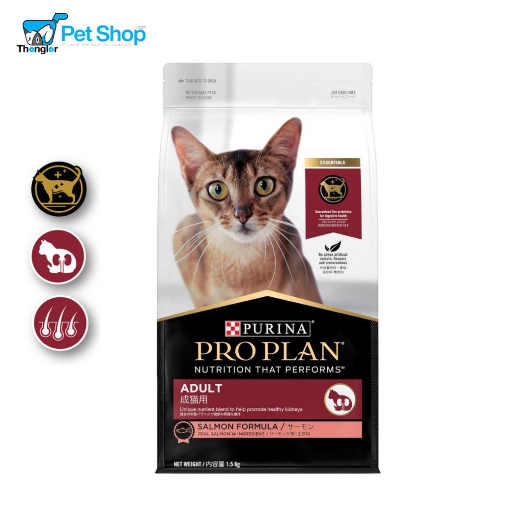 Pro Plan Cat Kitten Starter 4  