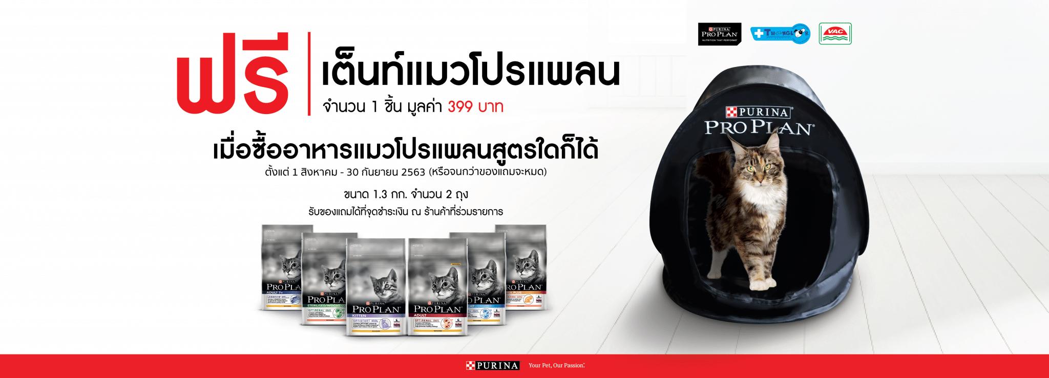 PP ads02 |