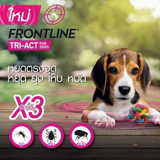 Frontline triact20080710 |