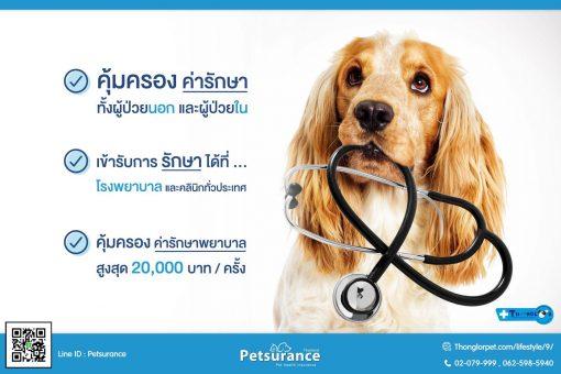 petsurance 2  