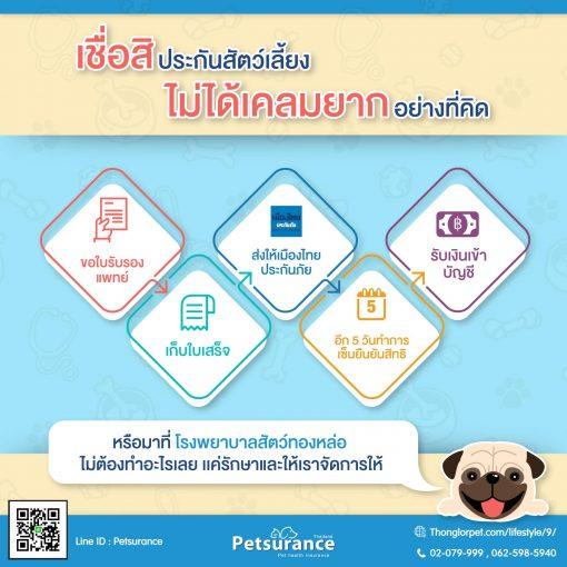 petsurancehow to  