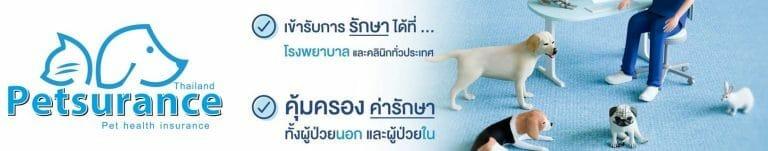Petsurance cover photo2 |