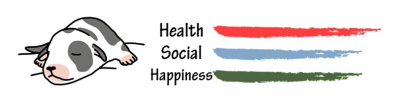 health social |